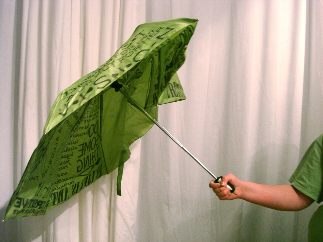 shannonsstudio.com umbrella project disaster